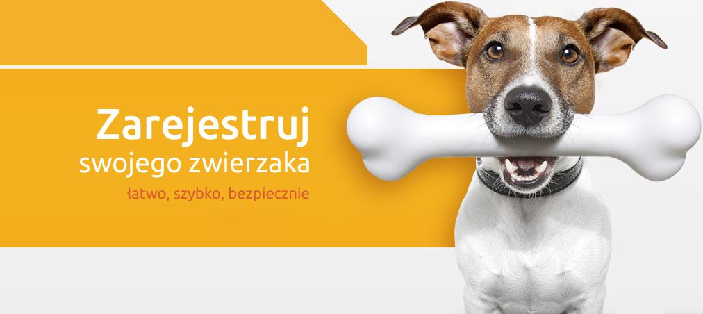Rejestracja zwierząt oznakowanych